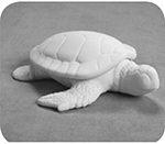 Turtle Box $22